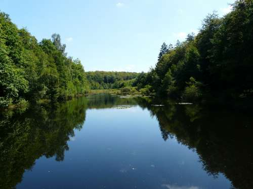 Pond Water Forest Trees Vosges Landscape Nature