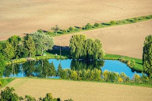 Pond Trees Mirroring Fields Landscape Arable