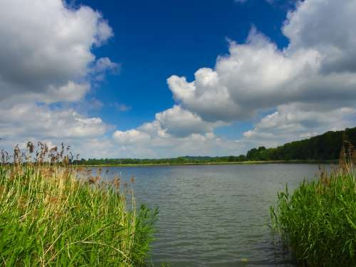 Pond Water Clouds Lake Nature