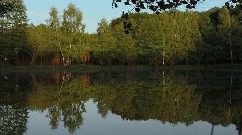 Pond Nature Water Reflections Landscape Landscapes