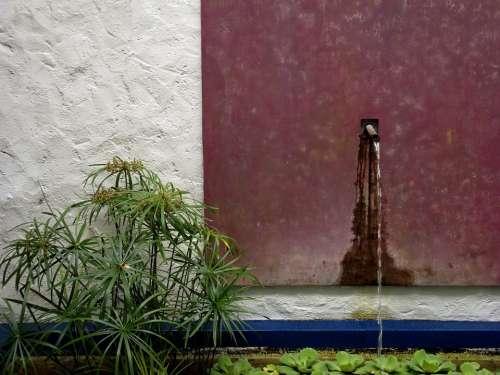 Pond Garden Water Tap Botanical Zen