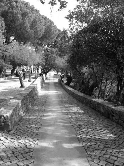 Portugal Black And White Garden Path Stonework