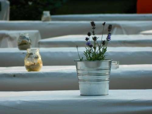 Pot Vase Lavender Flower Table Summer Ornament