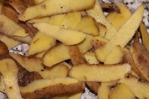 Potato Dish Organic Waste Shell Peel Potatoes Peel