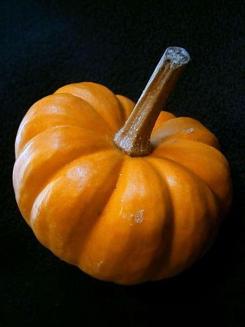 Pumpkin Gourd Miniature Pumpkin Decorative Ribbed
