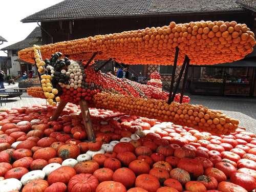 Pumpkin Gourd Decoration Autumn Motive Aircraft
