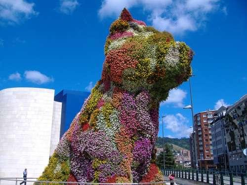 Puppy Flowers Bilbao Gughenheim Spain