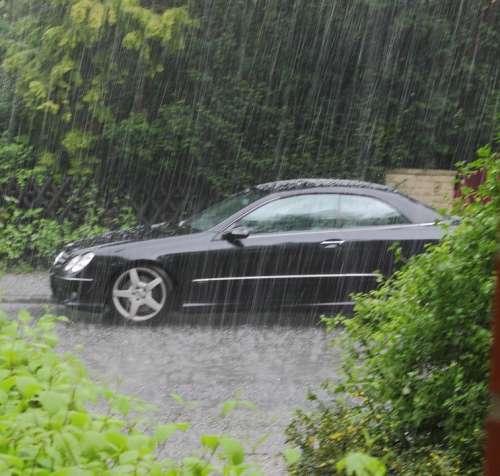 Rain Auto Plant Weather Bad Weather Storm