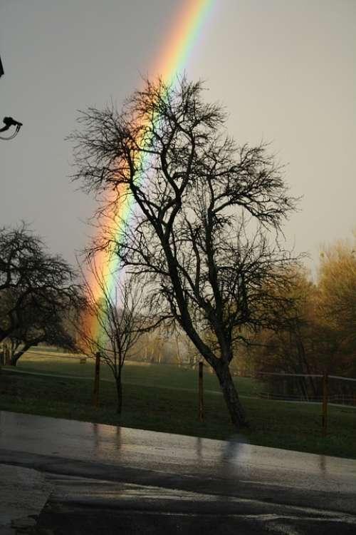 Rainbow Road Landscape
