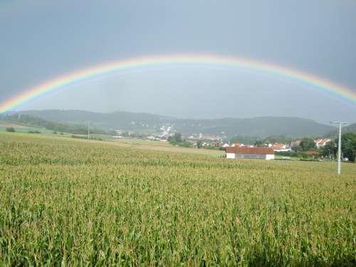 Rainbow Cornfield Field