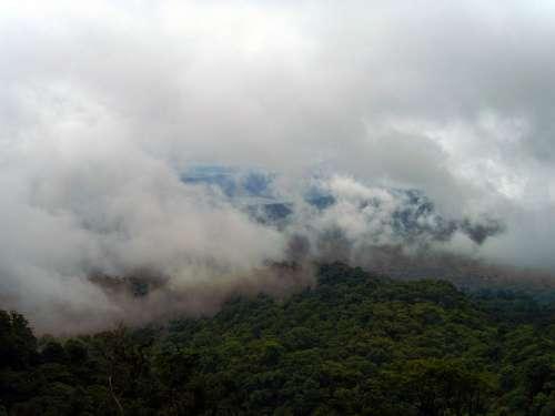 Rainforest Clouds Tropical Green Nature Costa Rica