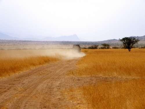 Range Rover Vehicle Dust Cloud Grass Yellow Grass