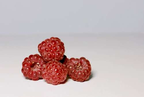Raspberry Berry Red Fruit Appetizing Closeup