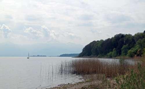 Reed Lake Bank Rest Idyll