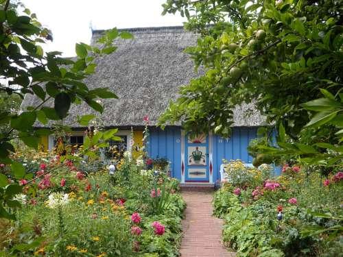Reed Roof Colorful House Building Door Garden