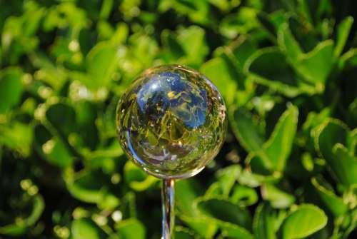 Reflection In A Ball Garden Of The Sambucs