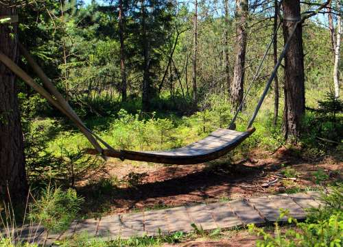 Relaxation Swing Hammock Rest Sleep Forest