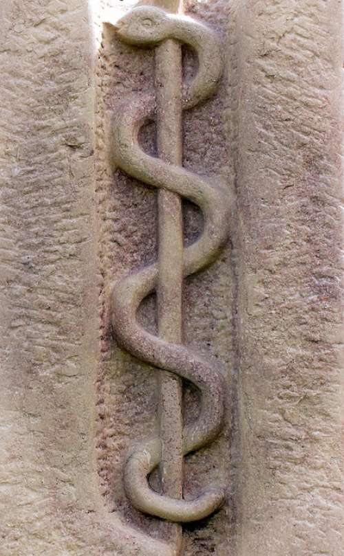 Relief Symbol Rod Snake Äskulapstab
