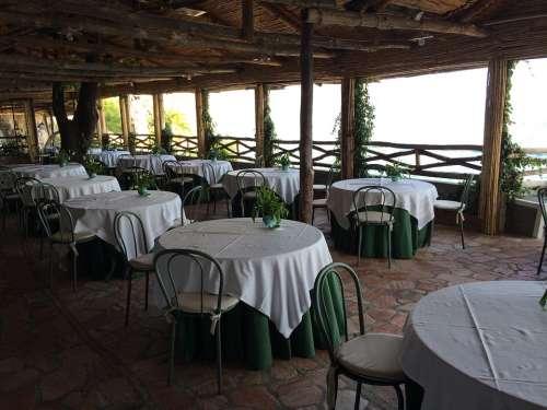 Restaurant Summer Tables Meal Dinner Cafe Dining