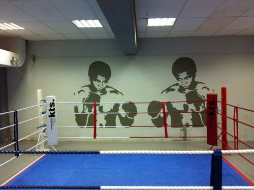 Ring Boxing Fight Punch