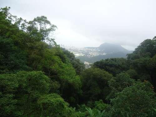 Rio De Janeiro Green Corcovado Brazil