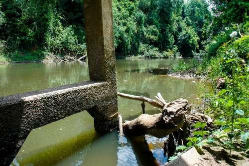 River River Landscape Of The Bridge