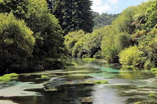 River Scenic Landscape Nature Scenery View Tree
