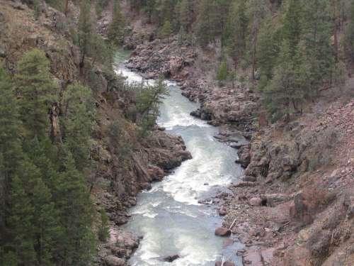 River Riverbed Landscape Rocks Water Nature Trees