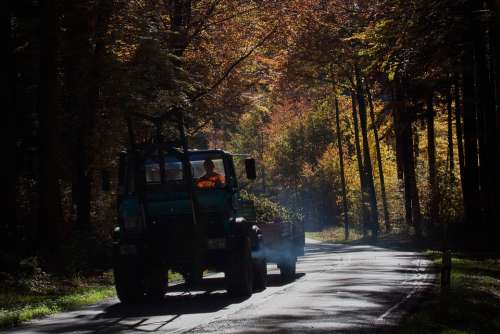 Road Unimog Vice Forest Autumn Fall Foliage