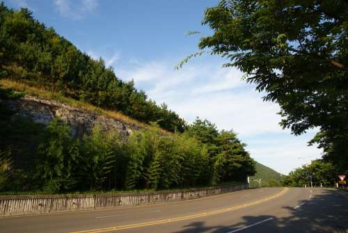 Road Gil Forest Landscape Nature Mountain Asphalt