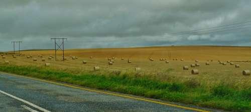 Road Landscape Hay Bales Field Nature Wide Meadow