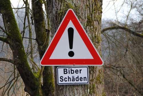 Road Sign Beaver Damage Tree In Nauen Inn Bavaria