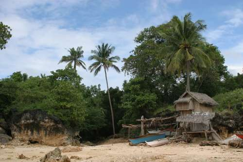 Robinson Crusoe Philippines Sand Beach Palm Trees
