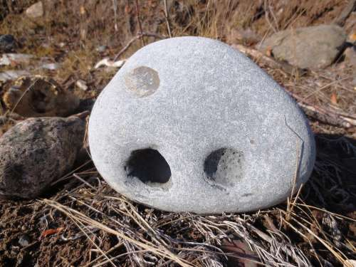 Rock Stone Face Stone Formation Nature