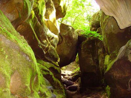 Rock Sand Stone Devil'S Canyon Sachsen