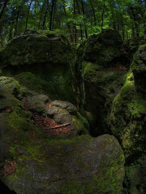 Rock Moss Forest Green Bemoost Nature Wild Dark