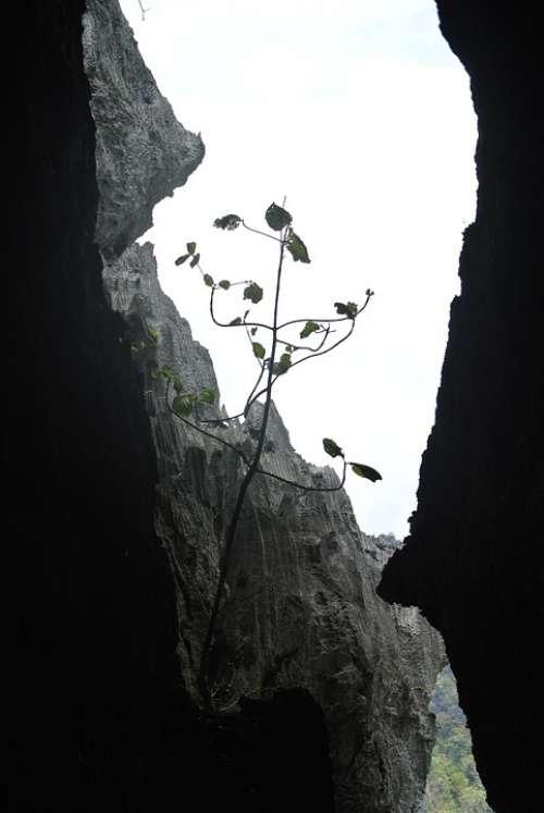 Rocks Caves Limestone