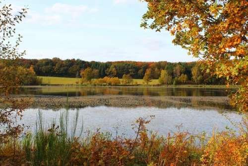 Rodder Maar Autumn Leaves Nature Maar Waters Mood