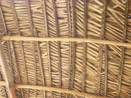 Roof Braided Leaves Cabin