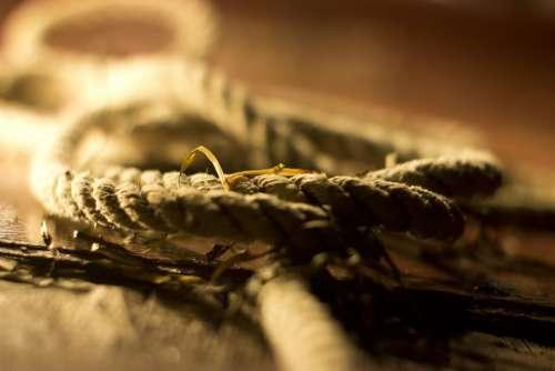Rope Sailing Ship Nautical Marine Retro Knot Old