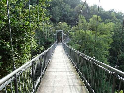 Rope Bridge Suspension Bridge Bridge