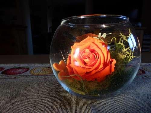 Rose Glass Sun Light Effect Sunbeam Decorative