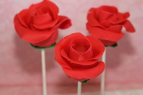 Roses Cake Pops Flower Decoration Cakes Bake Food