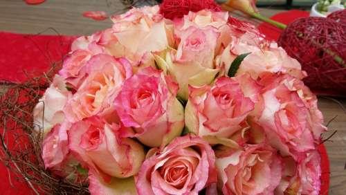 Roses Buquett Plant Color Romantic Romance