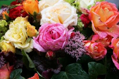 Roses Strauss Bouquet Romantic Flowers