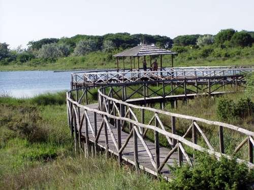 Rosolina Mare Orto Botanico Sea Beach
