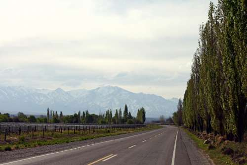 Route Mountain Road Mendoza Landscape Asphalt