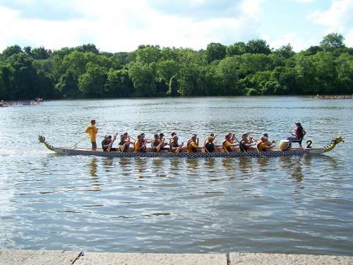 Rowboat Water Water Sports Rowing Boat Rowing