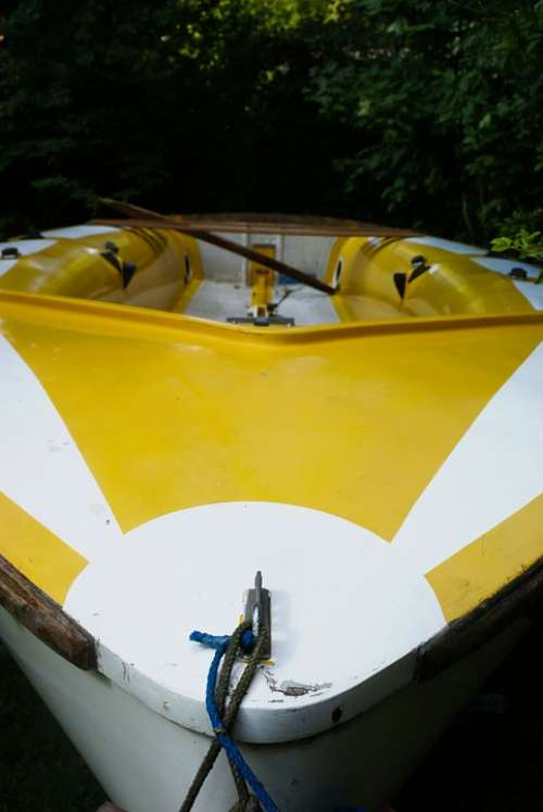 Rowing Boat Boat Yellow Boating Rowing Water Sea