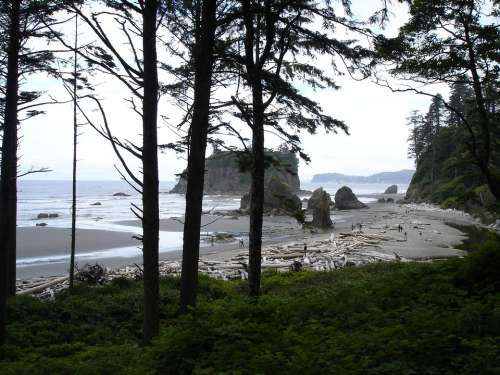 Ruby Beach Beach Driftwood Rock Formations Coast